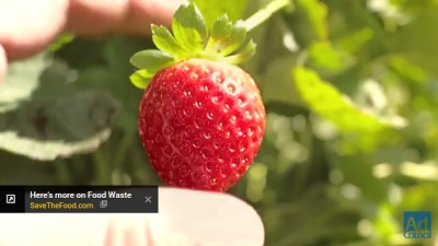 The Extraordinary Life and Times of Strawberry | Save The Food | Ad Council