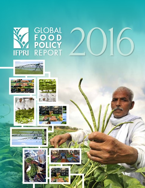 2016 Global Food Policy Report