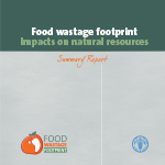 Food wastage summary report